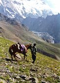 Trekking In The Himalayers