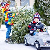 Two Little Kid Boys Driving Toy Car With Christmas Tree. Happy Children, Siblings, Twins, Friends In poster