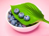 Blueberries On A Background Of Coral. Delicious Healthy Blueberry On A Coral And Pink Background Wit poster