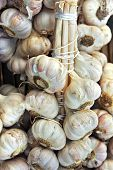 Bundles of fresh garlic for sale at a market in Rennes, France
