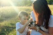 40 Years Old Mom And Son Playing With A Little Kitten. Mom Giving A First Pet To His Son. Happy Fami poster