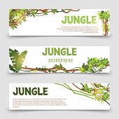 Tropical Plants Vector Banner. Jungle Leaves And Lianes Banner Templates. Illustration Jungle Tropic poster