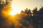 Sunrise In Countryside Nature Background. Dark Background Of Countryside In Sunrise.first Sun In Cou poster