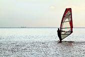 Man Windsurfer