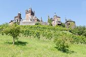 Cochem Castle In Germany, Surrounded By Vineyards