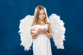 image of christmas angel  - Portrait of light angel with purely white dove looking at it with love - JPG