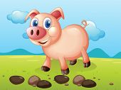 Illustration of a smiling pig near the stones