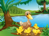 Illustration of a mother duck with her ducklings