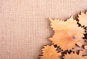 Decorative Background With Curved Leaves On The Burlap
