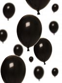 Black balloons isolated on white background