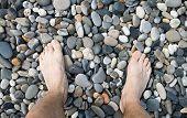 Male Legs On Pebble. Russia, Coast Of Black Sea, Sochi, Adler