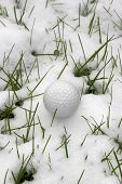 Single Dimpled Golf Ball In The Snow