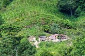 picture of shacks  - Small shack on a hill in Magdalena Colombia with crops high up on the hill - JPG