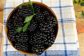 pic of mulberry  - ripe Mulberry In Mug view from above - JPG