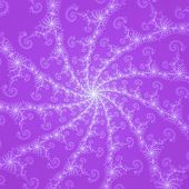 Mauve purple spiral web