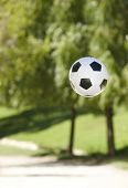 Soccer Ball In The Park. Trees Out Of Focus