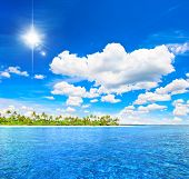 Tropical Beach With Palm Trees And Sunny Blue Sky