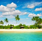 Tropical Island Beach With Perfect Blue Sky