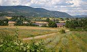 Southern France, rural landscape: lavender fields