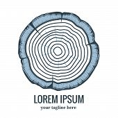 Annual tree growth rings logo icon