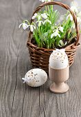 Easter Decoration With Eggs And Snowdrops