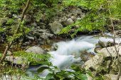Iao Stream