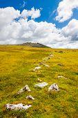 Rough Tor Bodmin Moor Cornwall