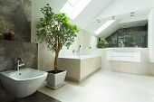 Modern House Bathroom