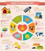 Pets infographic set