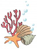Illustration of the shells and starfish under the sea on a white background