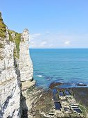 View Of Oyster Farm And Cliff On English Channel