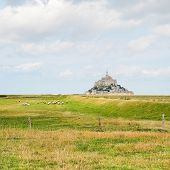 foto of mont saint michel  - view with sheep and mont saint - JPG