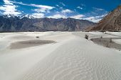 Dunes In Nubra Valley