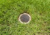 Floor Drain Contrast With Green Grass Background