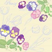 Background with pansies and tulips