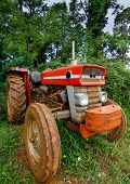 Vintage Tractor and Forest