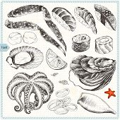 Collection of seafood, hand-drawn illustration in vintage style, set 1.