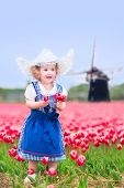 Adorable toddler girl in Dutch costume in field of tulips next to windmill