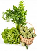 Group Of Raw Fresh Organic Assorted Green Vegetables