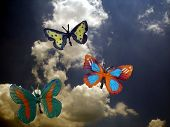 Faux Butterflies and Sky 2