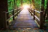 stock photo of glow  - perspective of wood bridge in deep forest crossing water stream and glowing light at the end of wooden ways - JPG