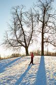Girl enjoying cross-country skiing running up in sunny day