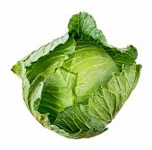 pic of water cabbage  - fresh whole Cabbage isolated on white background - JPG