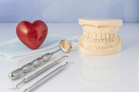 pic of false teeth  - Dental mold showing the teeth of the upper and lower jaw with dental tools and a face mask on a table in a dental care and examination concept - JPG