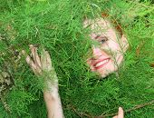Woman In Thuja Tree