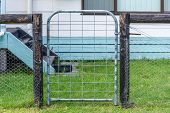 stock photo of chicken-wire  - garden gate galvanized tube with wooden posts to secure it - JPG