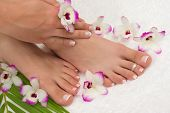 stock photo of pedicure  - Pedicure - JPG