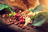 Постер, плакат: Coffee beans with real coffee fruits flowers and leaves on wooden table close up Red coffee beans