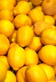 A Group Of Lemons