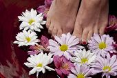 Feet In Water With Flowers